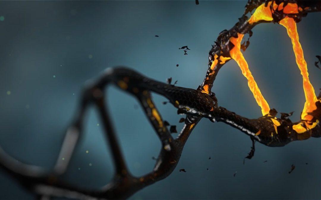 The Telomere Tradeoff: Long vs Short Telomeres for Disease Risk and Longevity